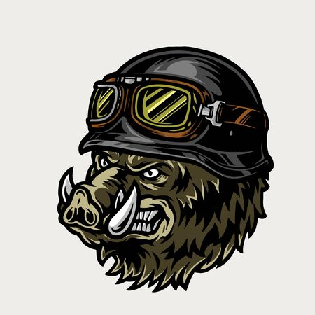Colorful angry biker wild boar head in motorcycle helmet and goggles in vintage style isolated vector illustration