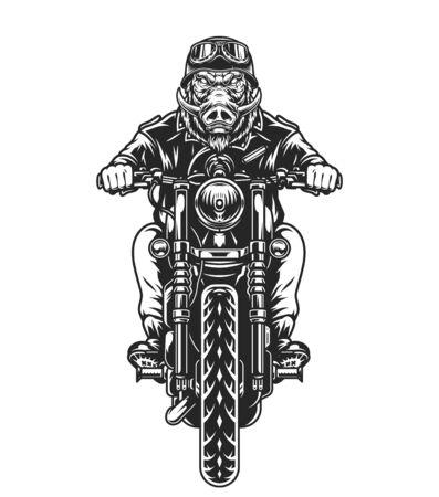 Motorcyclist with cruel wild boar head riding motorbike in vintage monochrome style isolated vector illustration Ilustración de vector
