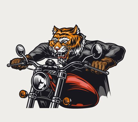 Angry tiger head biker riding motorcycle in vintage style isolated vector illustration Ilustracja