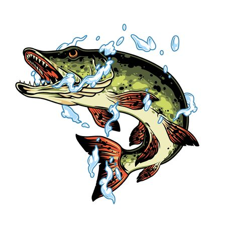 Jumping pike fish in water splashes in vintage style isolated vector illustration