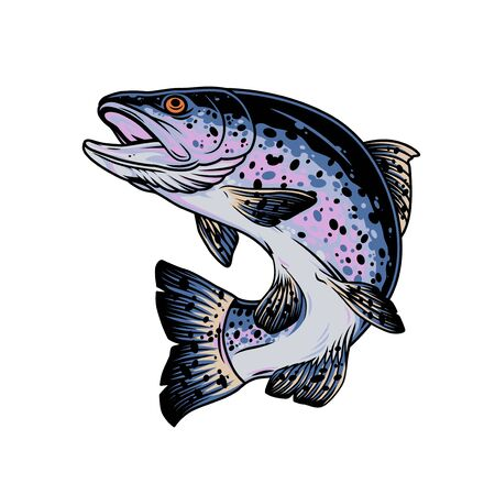 Rainbow trout vintage concept on white background isolated vector illustration Vectores