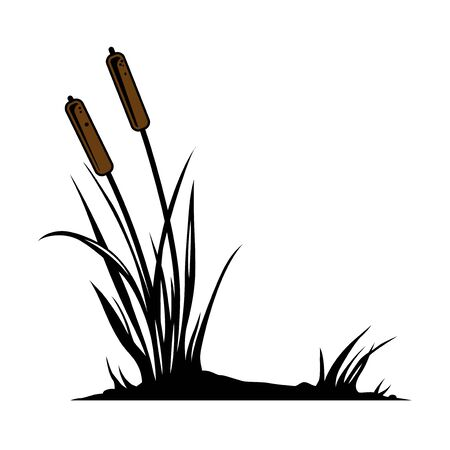 Cattail vintage colorful concept on white background isolated vector illustration