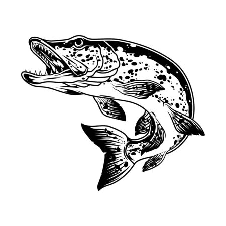 Pike fish monochrome concept in vintage style isolated vector illustration