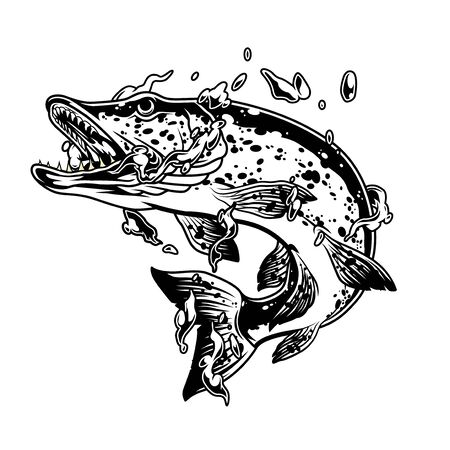 Pike fish in water splashes concept in vintage monochrome style isolated vector illustration