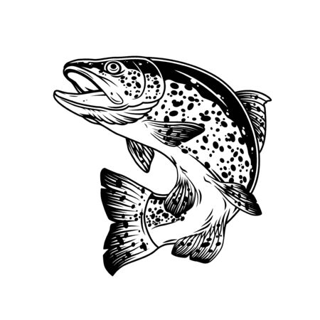 Jumping trout fish vintage template in monochrome style isolated vector illustration Ilustração