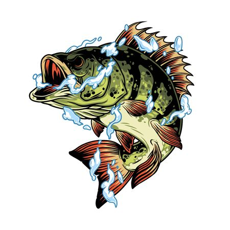 Perch fish in water splashes concept in vintage style isolated vector illustration