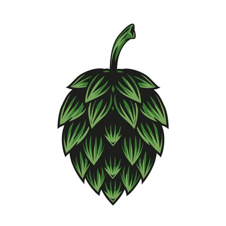 Green hop cone concept in vintage style isolated vector illustration