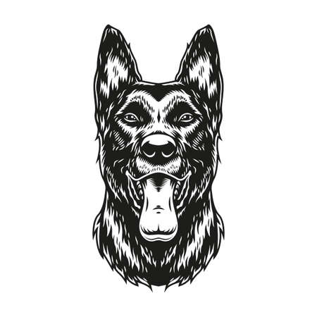 Belgian malinois dog with tongue out in vintage monochrome style isolated vector illustration