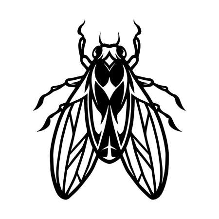 Fly insect tattoo template in vintage monochrome style isolated vector illustration