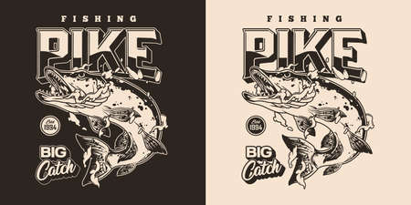 Vintage monochrome fishing badge with inscription and angry pike fish in water drops isolated vector illustration