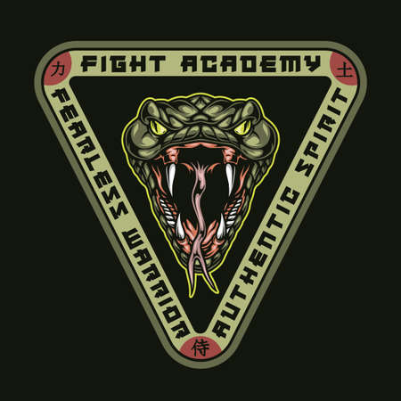 Fight academy colorful print in vintage style with angry snake head and inscriptions on triangle isolated vector illustration Ilustracja