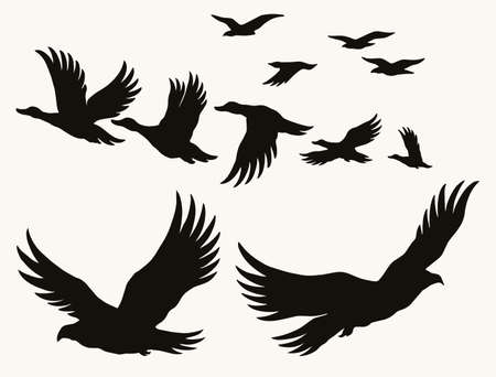 Flying birds silhouettes vintage concept Stock Illustratie
