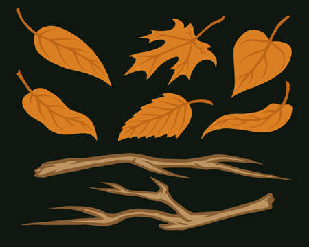 Tree branches and leaves collection