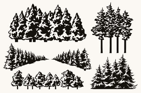 Vintage concept of forest trees