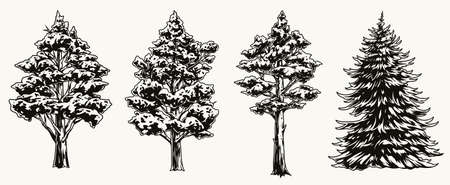 Vintage collection of forest trees