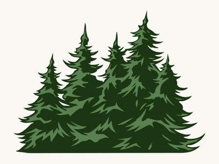 Green fir trees vintage template Stock Illustratie
