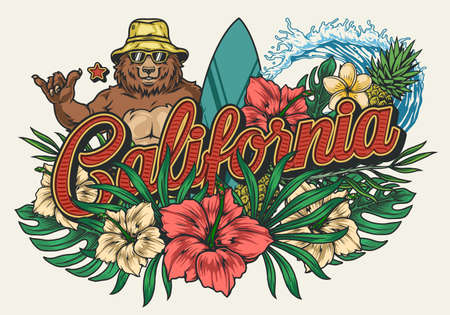 California surfing vintage colorful emblem