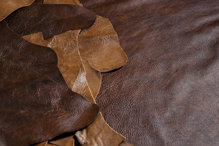 Natural cow leather samples in the tailoring workshop