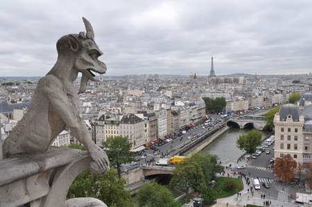 Stone demons gargoyle, View from Notre Dame de Paris