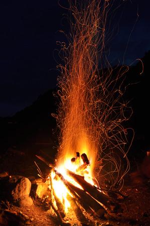 Campfire, bonfire in the forest  Standard-Bild