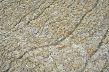stone texture, dry earth Standard-Bild