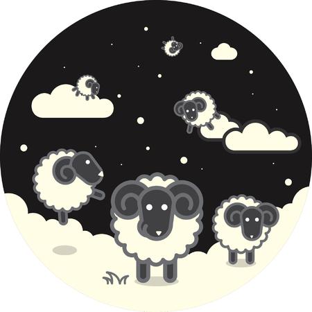 night: night lamb