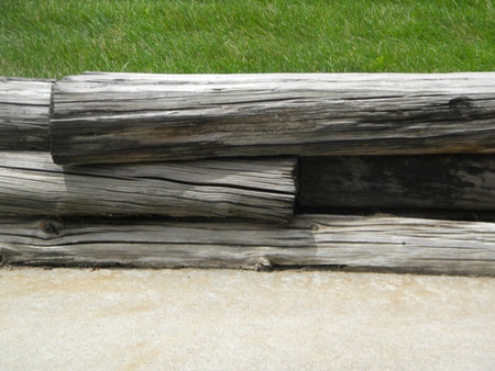 log edging photo