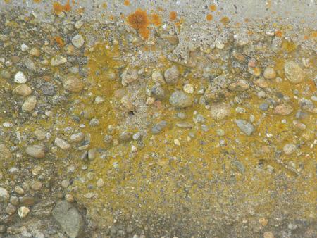 Yellow grunge texture photo