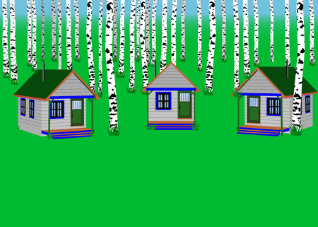 birch forest: The houses in the birch forest. Illustration