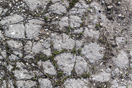 the old road: Texture of the old road with cracks