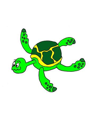 una ilustración de dibujos animados de una tortuga de mar, aislada en blanco.  Foto de archivo - 7957901