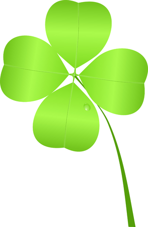 Shamrock for St  Patrick Stock Photo