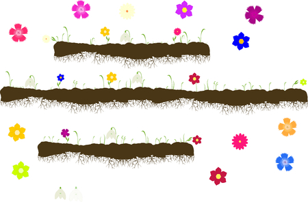 top menu: Vector with ground with roots,growing grass with flowers-snowdrops,carnations,forget-me-nots,gerbera,asters isolated on a white background Top menu