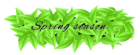 Banner made of leaves isolated on a white background with inscription  spring season  photo