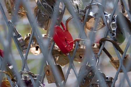 day: Shiny marriage locks after a rain. Good backround image for love, commitment, marriage. Stock Photo