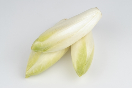 hojas: some endives on white background