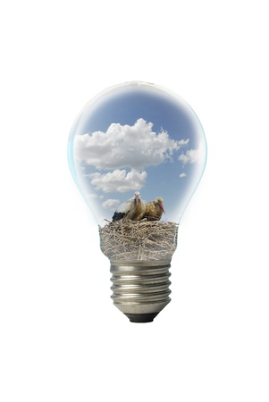 photomontage: photomontage with bulb and storks Stock Photo