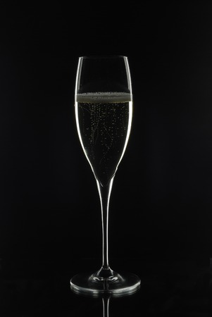 ferment: Cup of champagne on black background