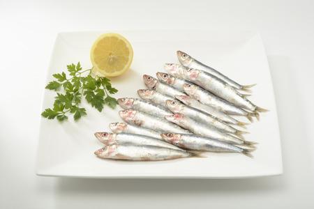sardinas: Sardinas crudas en placa en el fondo blanco