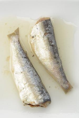 sardinas: Sardinas enlatadas en aceite vegetal