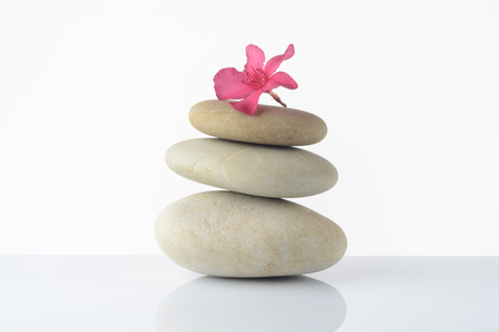 Stones stacked on white background and a pink flower