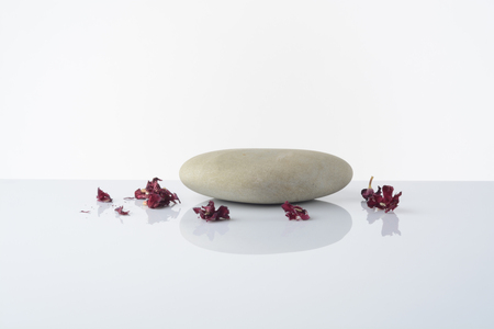 Stones on white background and a dried pink flower Stok Fotoğraf