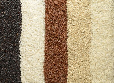 Raw rice top down view, different varieties
