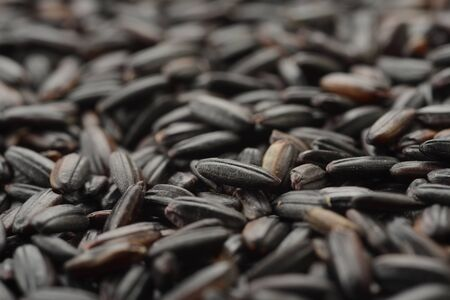 Raw black rice, macro Reklamní fotografie