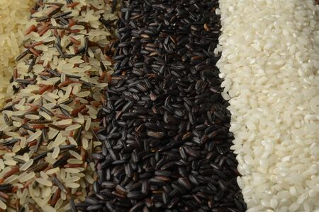 Raw rice macro picture, different varieties