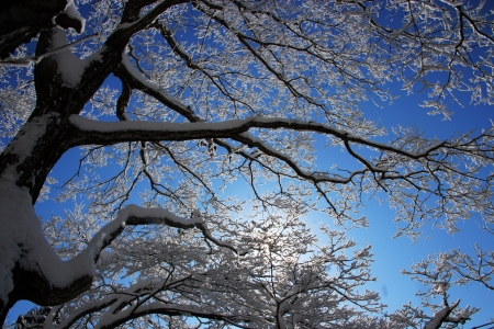 Beautiful winter landscape in south korea Daedunsan photo