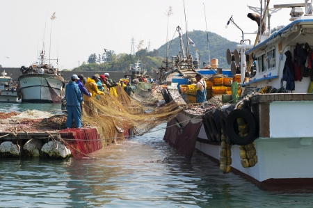 Beautiful landscape in South Korea,Fishing Villages,Anchovy fishing