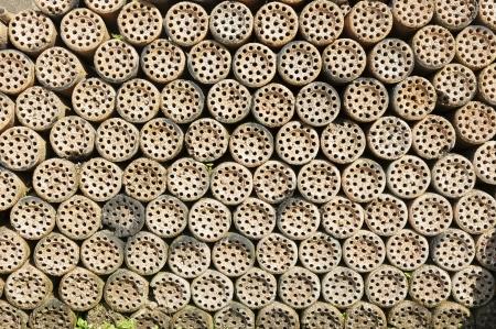 briquettes: Briquettes  Stock Photo