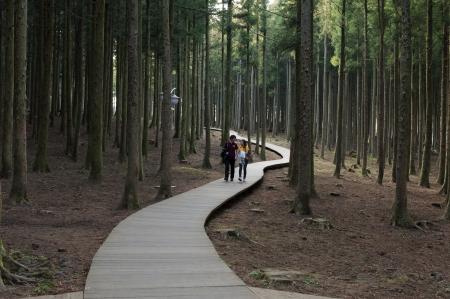 美しい「済州韓国」