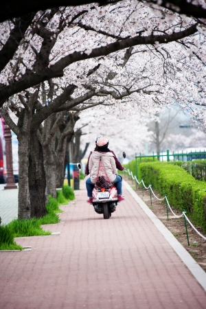 motorcycling: Motorcycling at park